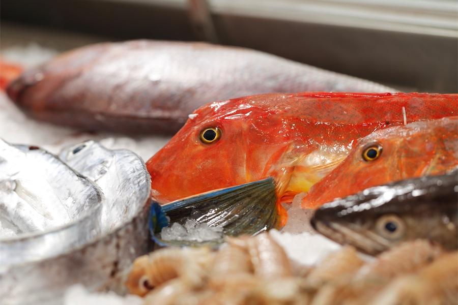 pescato fresco